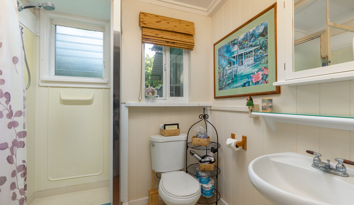 Cottage Bathroom with shower