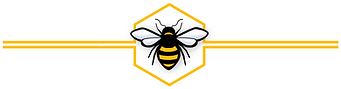 Bee header footer with lines 4096 x 1070