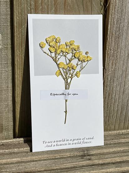 Seeds Gift Card: Strength