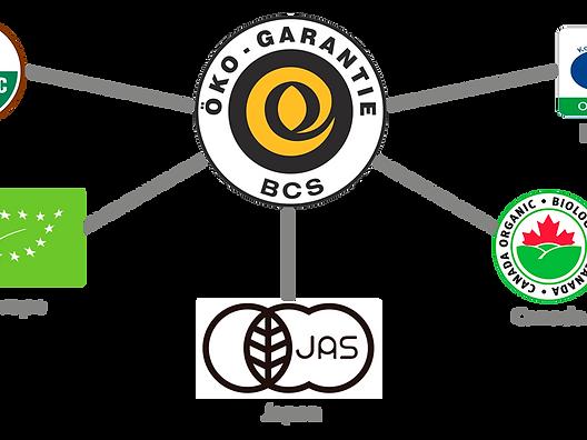 Diazteca agave certification logos