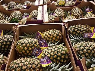 Diazteca pineapple
