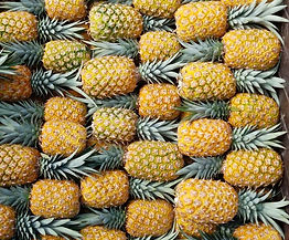 Diazteca color 4 pineapple for Europe
