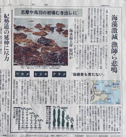 伊勢志摩の魚貝全滅