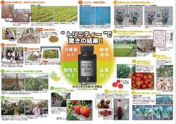 農薬を安全、食の安全