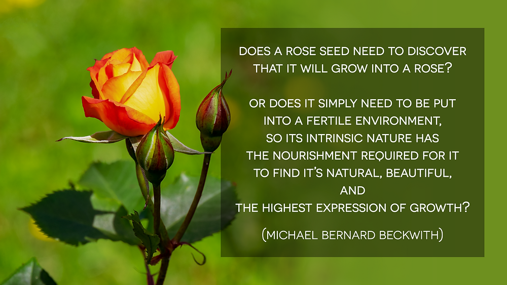 Does a rose seed need to discover that it will grow into a rose? Or does it simply need to be put into a fertile environment, so its intrinsic nature has the nourishment required for it to find it's natural, beautiful, and the highest expression of growth?_Learn the Spiritual Method for Setting Goals That Aligns Your Dreams with Your Soul's Ultimate Vision for Your Life with Michael Beckwith_Life Visioning Home Study Program Review_How to Experience Clarity of Soul and Confidence of Spirit_ Discover Your Life Purpose and Shine Bright Like A Diamond_ How to Get Clarity On Your Life Purpose?_How to Answer Your Personal Calling?_The Life Visioning Program by Michael Bernard Beckwith_ The Life Visioning Course Review_The Power of Visioning Program by Michael Beckwith