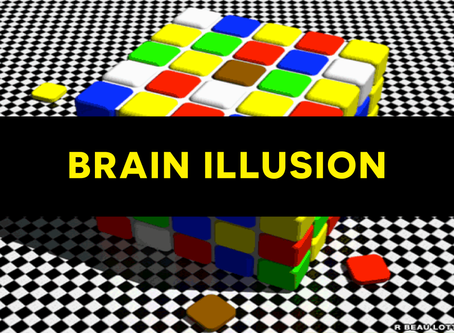Brain Illusion No. 2 🧩