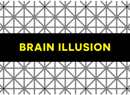 Brain Illusion 🧩