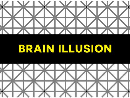 Brain Illusion 🧩