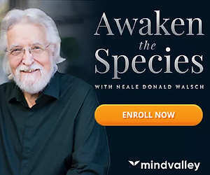 Awaken The Species by Neale Donald Walsch