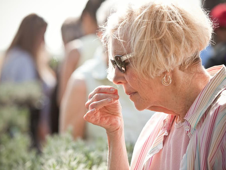 11th Annual Lavender Valley Festival
