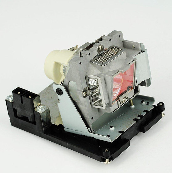 SP-LAMP-065   Lamp with Housing for INFOCUS SP8600