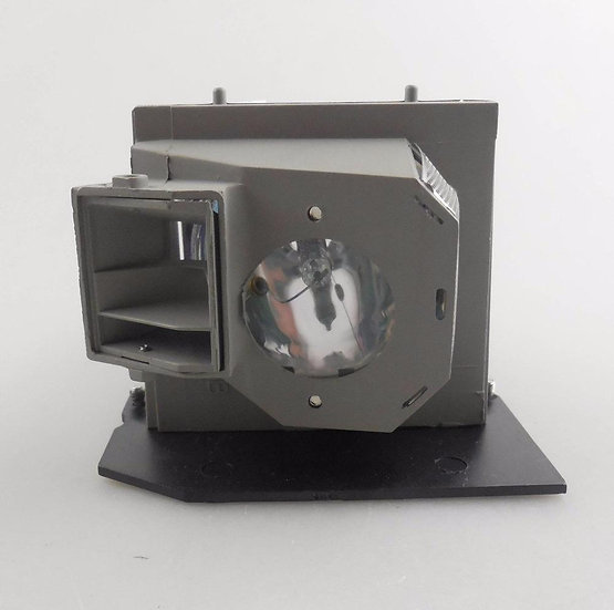 BL-FU300A / SP.8BH01GC01   Lamp with Housing for OPTOMA EP1080 / TX1080