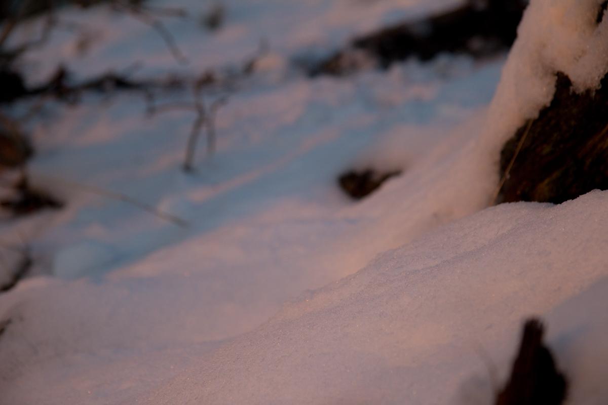Schnee Hoher Stein