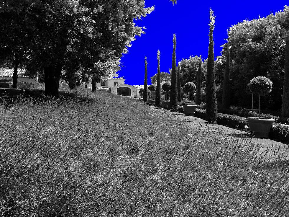 20160624_153121 bleu.jpg