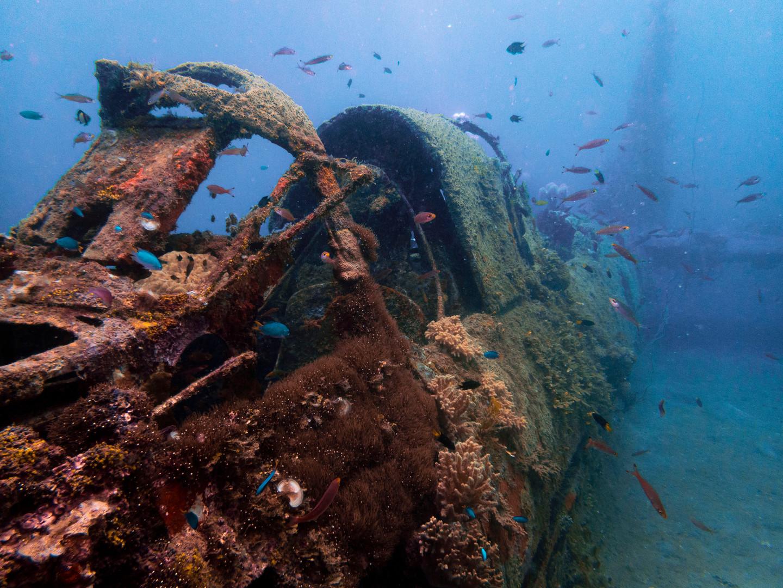 SBD_Douglas_Dive_Bomber.jpg