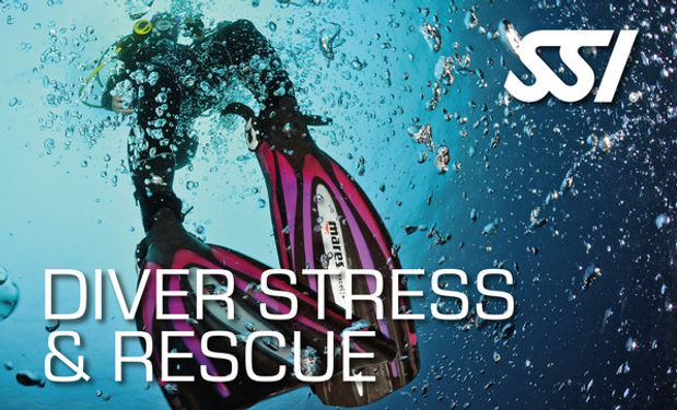 ssi stress and rescue.jpg