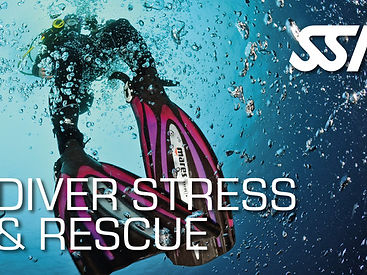 Rescue courses in Auckland