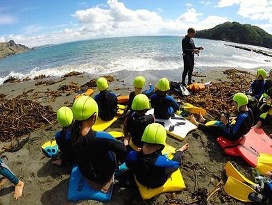 school snorke experiance goat island marine reserve