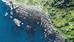Tabletop Reef: A Hidden Gem