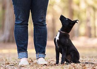 Hannah Bauchat photo by Maggie Fan.jpg