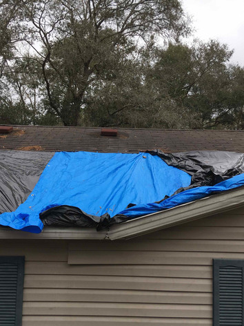 Roof Tarp Damaged.jpeg