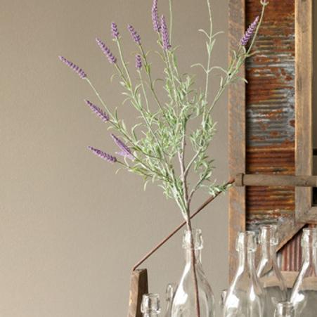 Lavender Plant Stem
