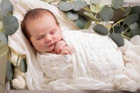 2021Annunciatta lr newbornPaula Sue Pho