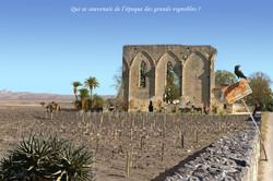 Les grands vignobles (Saint-Emilion)