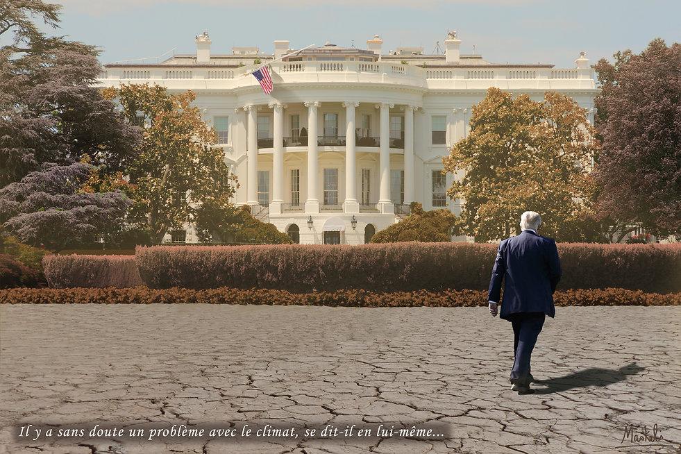 La sécheresse à la Maison blanche et Donald Trump dans son jardin déséché