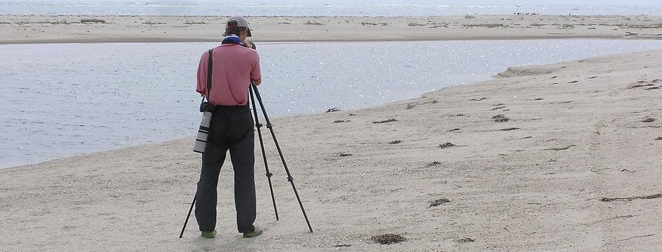 SKardell Scoping on Whale Point horiz.jp