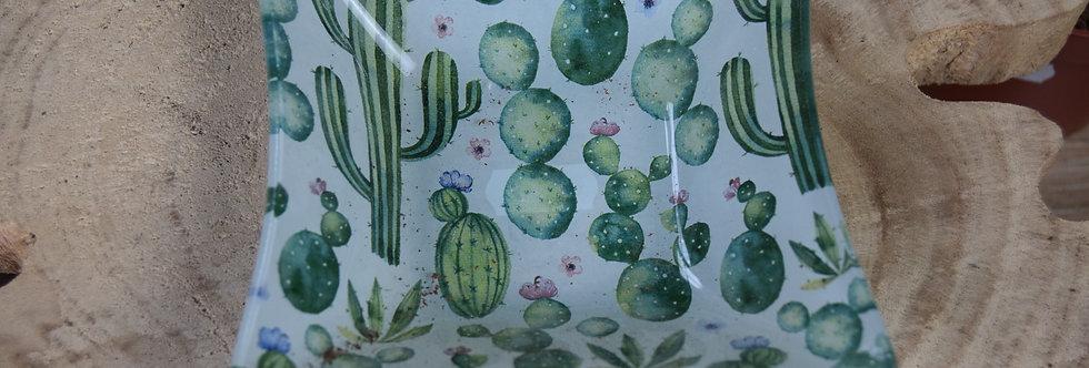 cactus dish
