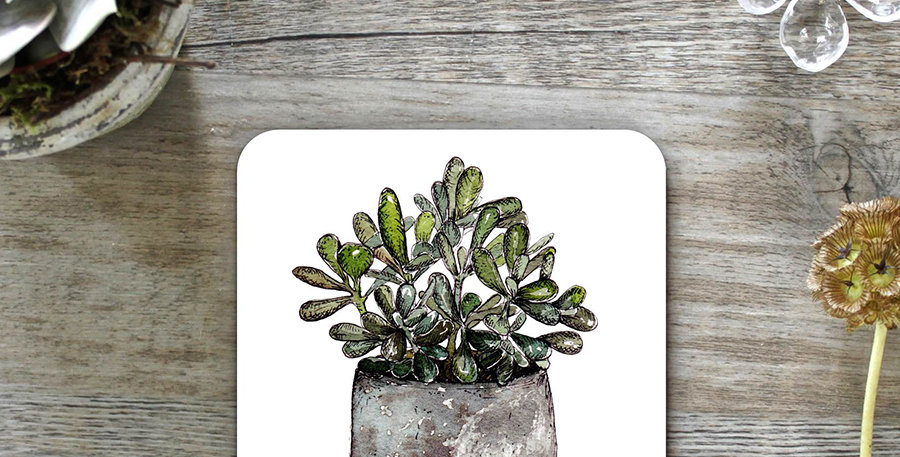 Money Plant Coasters (Set of 4)