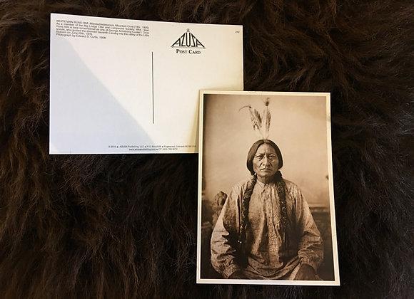 Postcard - Sitting Bull