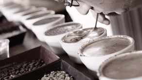 Coffee tasting & flavour notes