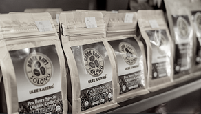 How To Choose The Best Coffee Beans