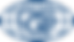 DQS-Logo-simplified-blue.png