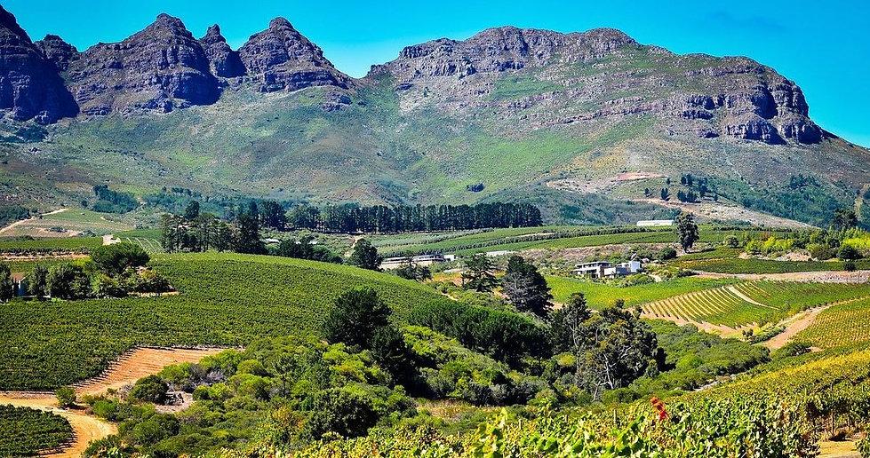Begeleide Rondreizen - stockfoto Zuid-Afrika