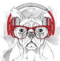 bulldog headphones_auto_auto.jpg