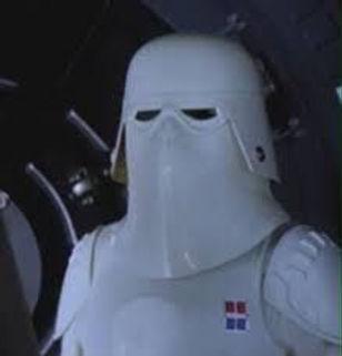 Commander Snowtrooper helmet.jpg