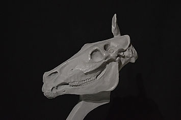 newimage prop replicas horse head sculpt