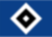HSV Logo.png