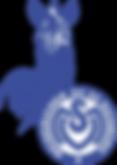 MSV Duisburg Logo.png