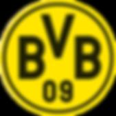 BVB_4c_frei-300x300.png