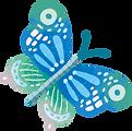 蝴蝶藍.png
