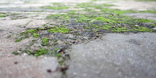 patio 7 600x302.jpg