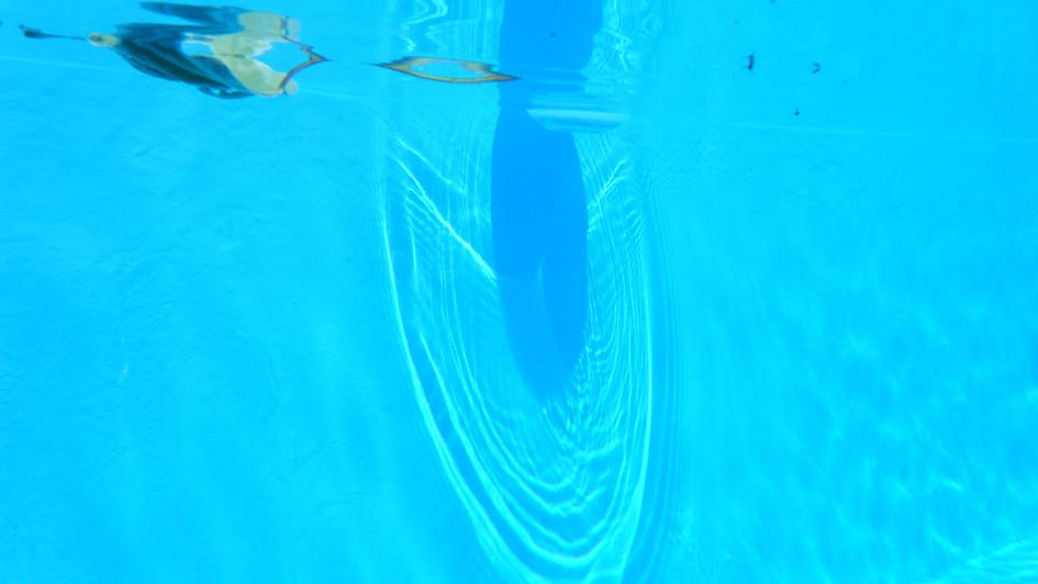 leaf under the surface 4.JPG