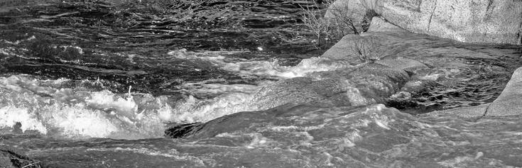 Water Movement #4