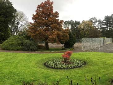 Strategies for Developing Three Major Parks for Bridgend County Borough Council