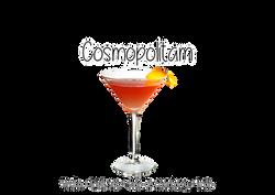 Bartenders Casamento SJC 7
