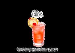 Bartenders Casamento SJC 10